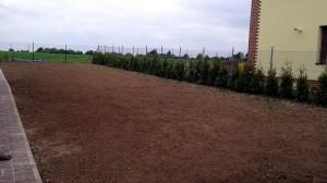 Nová zahrada-pokládka travního kobrce W-GARDEN-Realizace zahrad0006