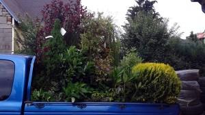 Nová zahrada-pokládka travního kobrce W-GARDEN-Realizace zahrad0007