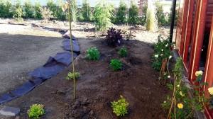 Nová zahrada-pokládka travního kobrce W-GARDEN-Realizace zahrad0011