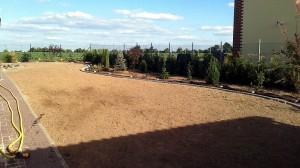 Nová zahrada-pokládka travního kobrce W-GARDEN-Realizace zahrad0013