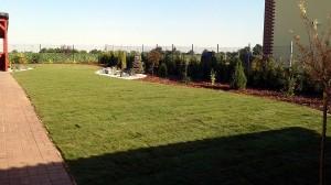 Nová zahrada-pokládka travního kobrce W-GARDEN-Realizace zahrad0029