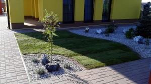 Nová zahrada-pokládka travního kobrce W-GARDEN-Realizace zahrad0031