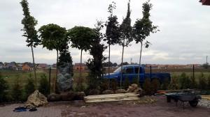 Nová zahrada-pokládka travního kobrce W-GARDEN-Realizace zahrad0037
