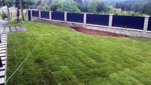 Pokládka travního koberce-W-GARDEN-Realizace zahrad0006
