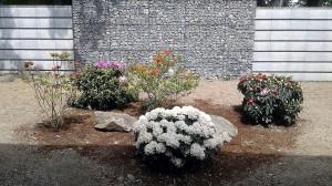 Nová výsadba-W-GARDEN-Realizace zahrad0002