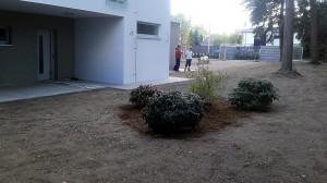 Nová výsadba-W-GARDEN-Realizace zahrad0005
