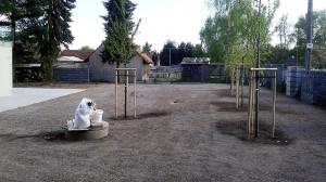 Nová výsadba-W-GARDEN-Realizace zahrad0008