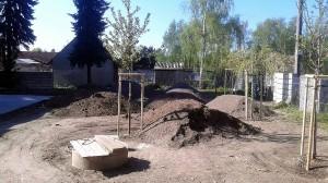 Nová výsadba-W-GARDEN-Realizace zahrad0010