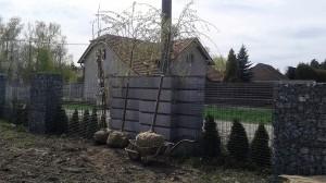 Nová výsadba-W-GARDEN-Realizace zahrad0013