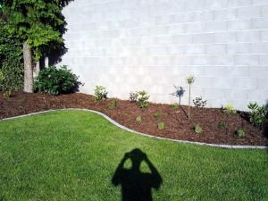 Lemování trávníku a výsadba keřů-W-GARDEN-Realizace zahrad0001