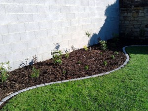 Lemování trávníku a výsadba keřů-W-GARDEN-Realizace zahrad0004