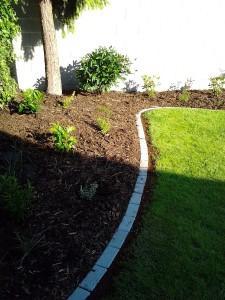 Lemování trávníku a výsadba keřů-W-GARDEN-Realizace zahrad0005