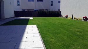 Výsadba okrasných dřevin a travního koberce-W-GARDEN-Realizace zahrad0004