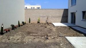 Výsadba okrasných dřevin a travního koberce-W-GARDEN-Realizace zahrad0027